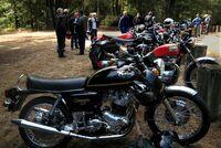 BikesAtHuckleberryFlat.jpg